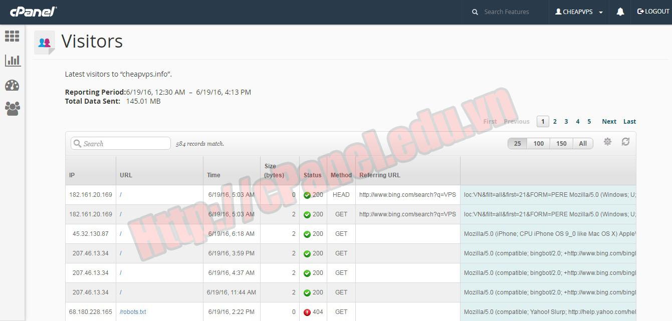Màn hình thể hiện chi tiết chức năng Visitors trong cPanel
