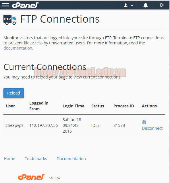 Giao diện FTP connections trong cPanel hosting.