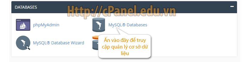 Mở trình quản lý cơ sở dữ liệu (Database) trong cPanel