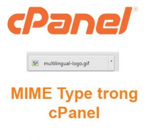 MIME Types trong host cPanel là gì? Cấu hình tập tin tải về trên host cPanel