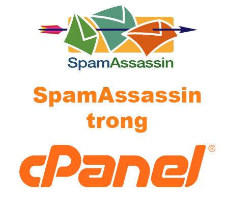 SpamAssassin trong host cPanel