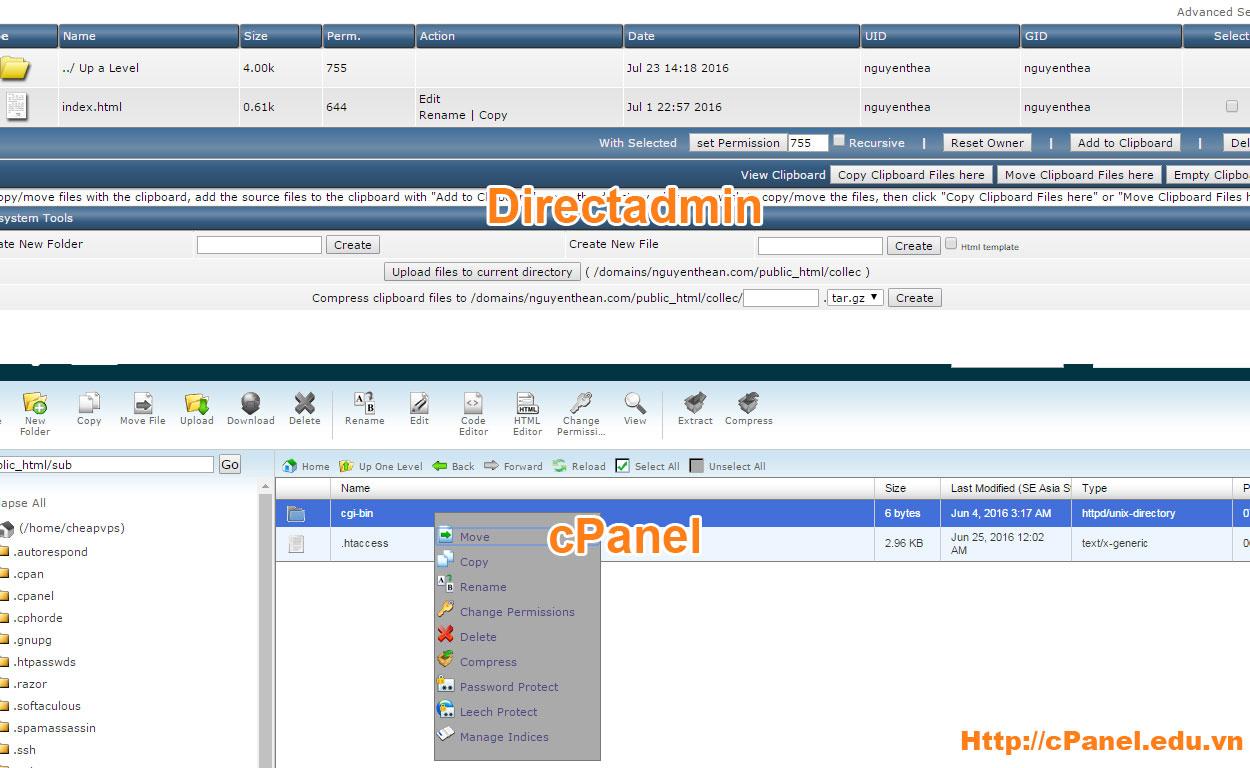 So sánh quản lý file của cPanel và Direct admin