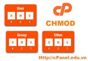 Hướng dẫn CHMOD để phân quyền truy cập files và folders trên cPanel