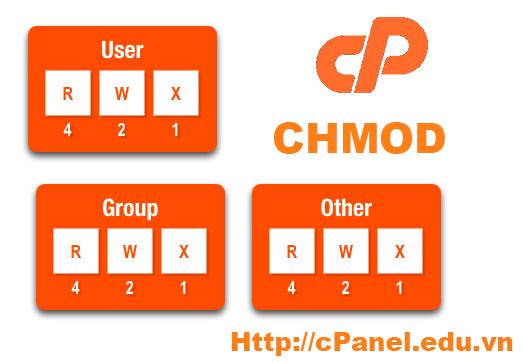 CHMOD trên host cPanel