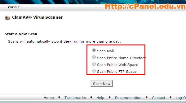 Chọn mục cần diệt virut trong cPanel hosting
