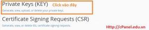 Bảo mật thông tin website với giao thức SSL/TLS trong cPanel (Phần 2)