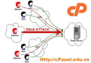 Dấu hiệu website của bạn bị tấn công DDOS dựa vào Raw Access Log của cPanel
